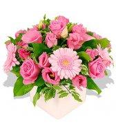 Розовые гвоздики картинка смайлик