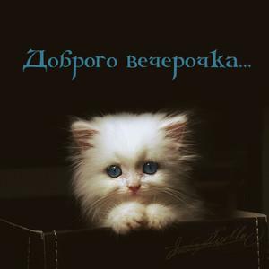 http://liubavyshka.ru/_ph/228/1/890337388.jpg?1489703166