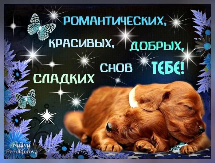 Картинки вечер добрый и сладких снов