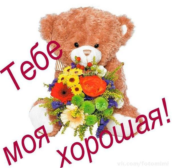 картинки спасибо подружка с цветами то, как едят