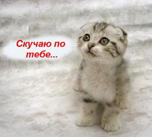 Открытки. <b>Скучаю</b> по тебе. <b>котенок</b> с грустными глазами картинки смайлики