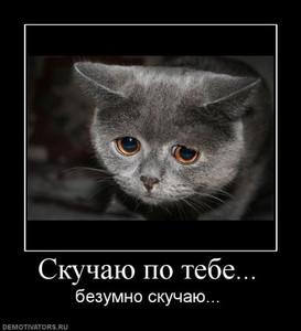 <b>Скучаю</b> по тебе! Безумно <b>скучаю</b> Серый <b>котенок</b> картинки смайлики
