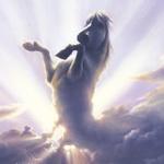 Гиф gif Белый конь в облаках неба рисунок