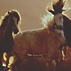 Тройка лошадей