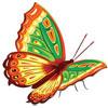 Смайлик Прекрасная бабочка зеленого с коричневым окраса аватар