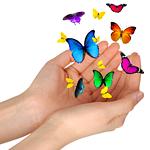 Бабочки вылетают из рук