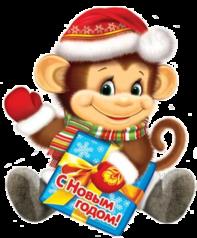 Красивая обезьянка