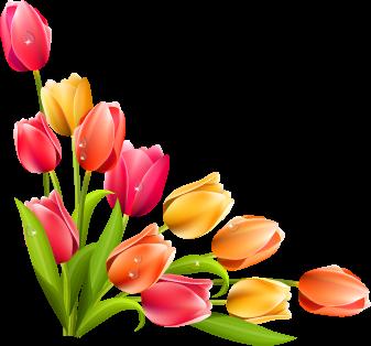Уголок из тюльпанов к 8 Марта