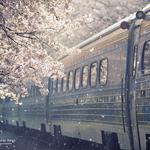 Смайлик Уезжающий поезд аватар