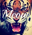 Гиф gif Морда тигра с надписью мяу рисунок